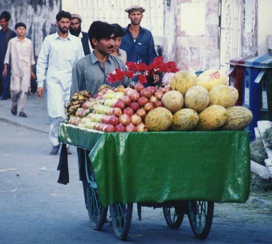 pakistan19